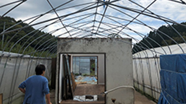 Plastic roof of an agricultural greenhouse blown away by wind and rain, showing damaged rest space for the workers inside (Kisarazu, Chiba; 19th September 2019) ©AAR